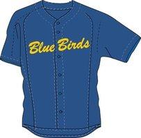 Clubkleding Blue Birds