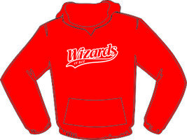Wizards of Boz Hoodie