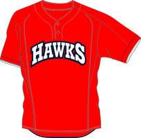 Hawks BP Jersey