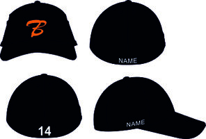 Bears FLEX CAP
