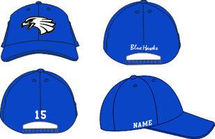 Blue Hawks Open Woolcap
