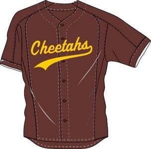Cheetahs Jersey