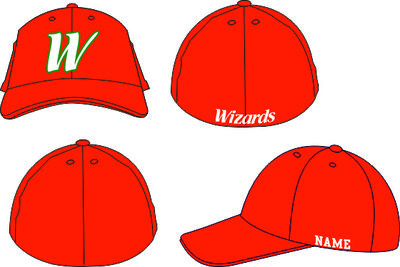 Wizards of Boz FLEX CAP