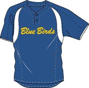 Blue Birds Practice Jersey