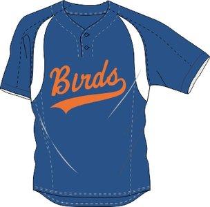 Birds Practice Jersey