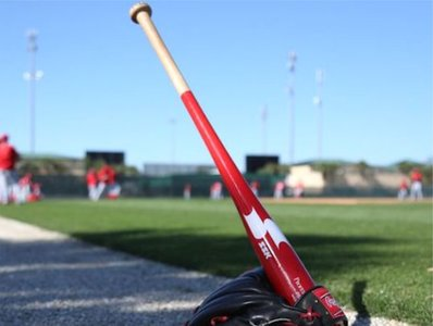 "PS150 - SSK 35"" Wood Fungo"